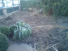 Garten- und Landschaftspflege - vorher
